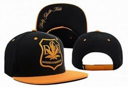 Generic DGK Agriculture Snapback in Black Same Style Caps