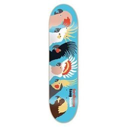 Birdhouse Skateboards Tony Hawk Birds Skateboard Deck