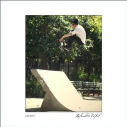 Red Hook (The Berrics - GO ALL DAY)
